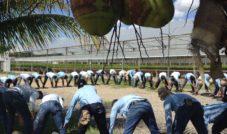 Os benefícios da ginástica laboral